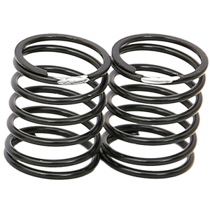 ARC R107046 - R11 2016 Shock Spring Short - 0.22g - silver
