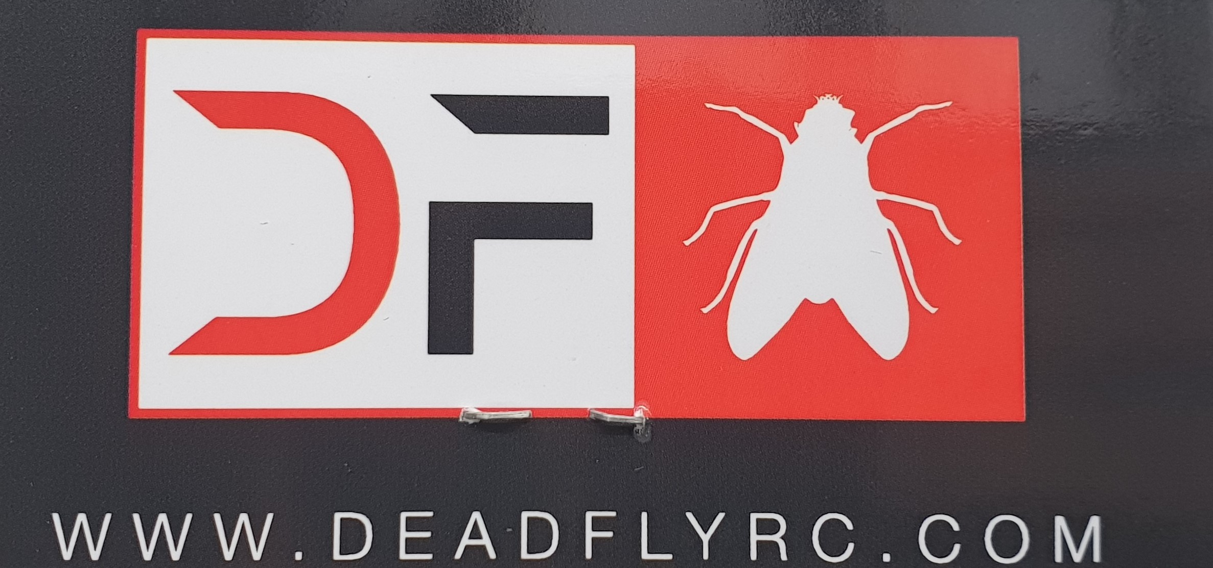 deadfly_logo